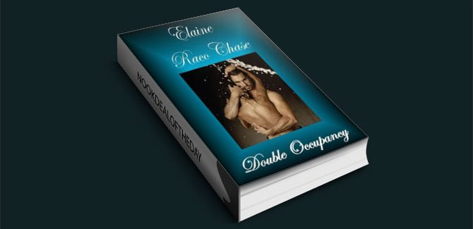Double Occupancy by Elaine Raco Chase