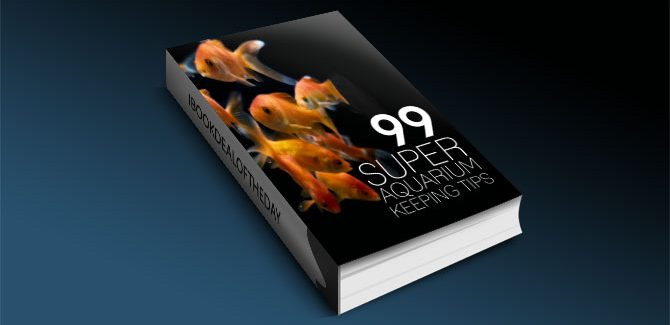 99 Super Aquarium Keeping Tips by by Allon Baron