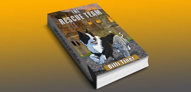 children's fiction kindle book, The Rescue Team by Billi Tiner