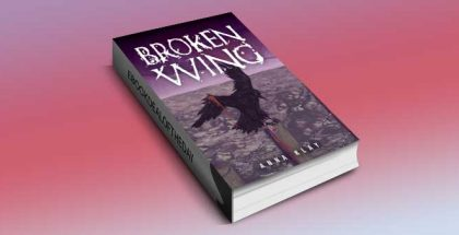 """a literary fiction kindle book """"Broken Wing"""" by Anna Klay"""