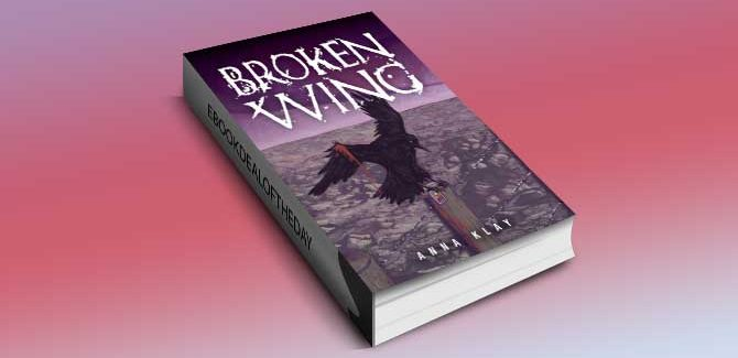a literary fiction kindle book Broken Wing by Anna Klay