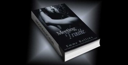 "new adult romance ebook ""Meeting Trouble"" by Emme Rollins"