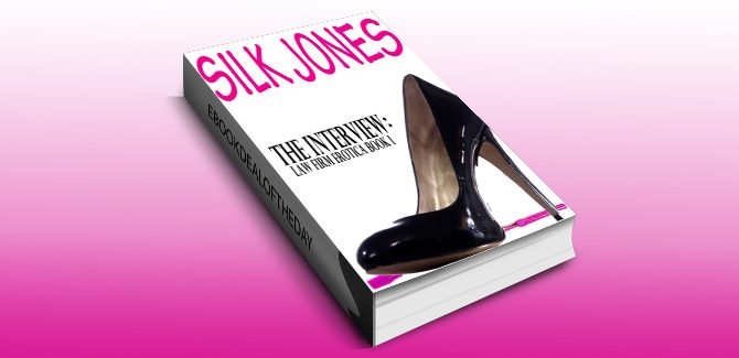erotica romance ebook The Interview: Law Firm Erotica Book I by Silk Jones