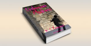 """yalit fantasy adventure ebook """"Undercover Madness (River Madden Book 2)"""" by K S Ferguson"""