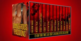 "contemporary romantic suspense boxed set ""Dangerous Passions: 12 Tales of Contemporary Sexy Hot Alpha Heroes by various authors"