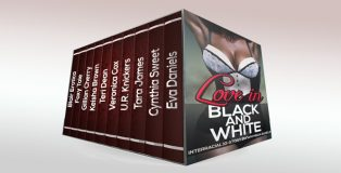 """erotic romance boxed set """"Love in Black and White (10 Story Interracial BWWM Super Bundle)"""" by Various Authors"""