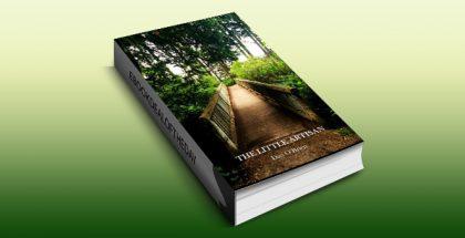 "ya fantasy ebook ""The Little Artisan"" by Dan O'Brien"