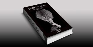 """thriller fiction ebook """"TEARS OF GLASS"""" by DAVID LAKE"""