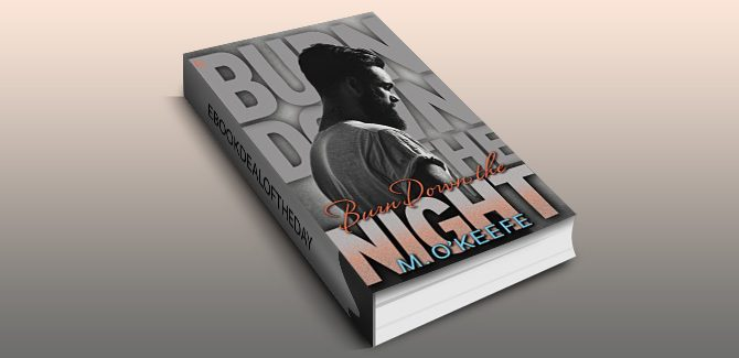an erotic romantic suspense ebook Burn Down the Night by M O'Keefe