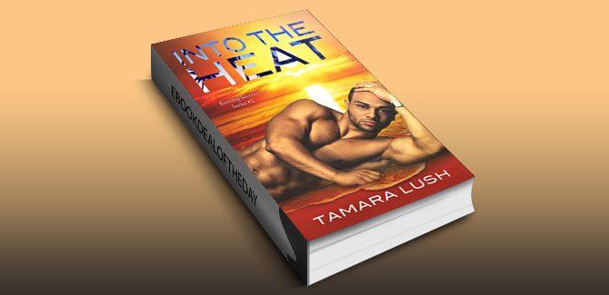 contemporary military romance ebook Into the Heat (Burning Secrets) by Tamara Lush