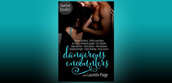 contemporary romance ebook Dangerous Encounters: Twelve Book Boxed Set