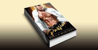 Passion: A Single Dad Small Town Romance by Bella Winters