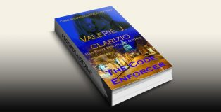 The Code Enforcer by Valerie J. Clarizio