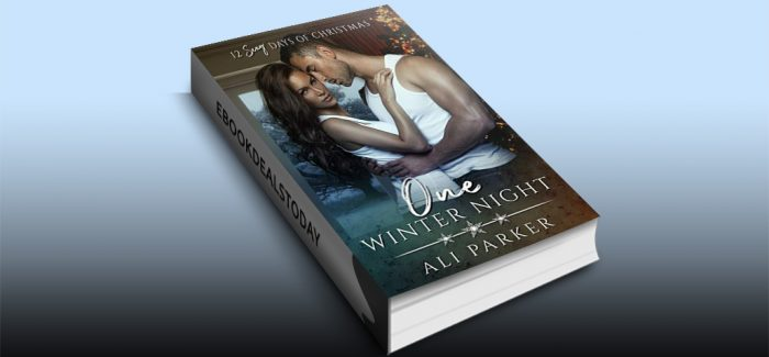 One Winter Night: A Sexy Bad Boy Holiday Novel by Ali Parker