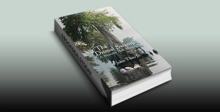 The Dismal Swamp by John Theo Jr.