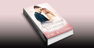 Accidental Meeting by Ajme Williams