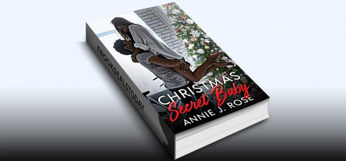 Christmas Secret Baby by Annie J. Rose
